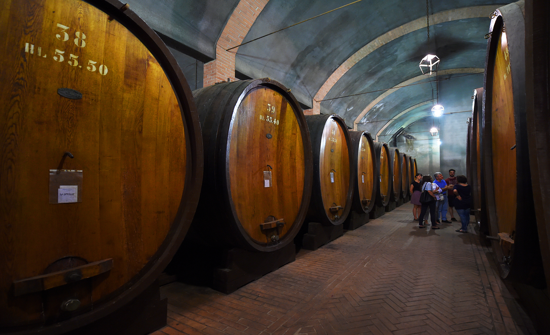 Amalfi Coast Activities: Campania Vineyard Tour and Wine Tasting