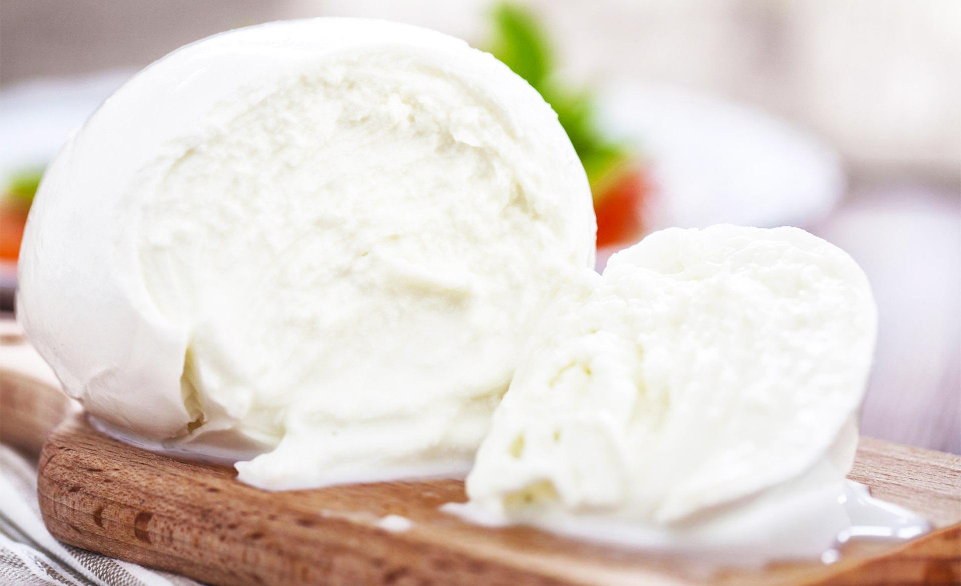 Campania Buffalo Mozzarella Tour Cheese
